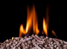Carbon neutral wood pellets