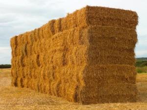 Bale burning biomass boiler